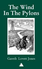 wind in the pylons book